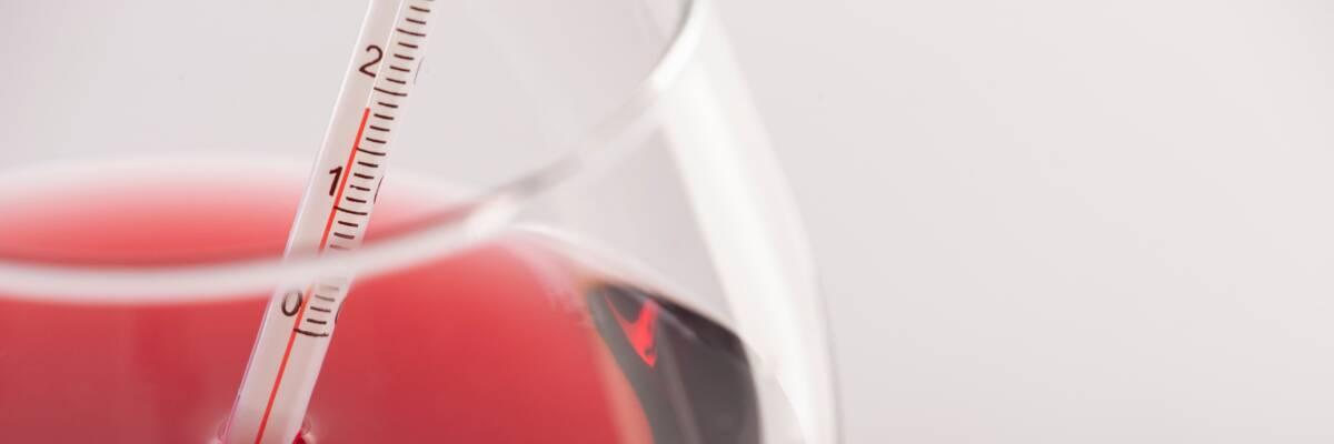 Temperatur, Temperament und andere Weinbefindlichkeiten