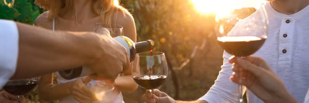 Weinfeste: Wie wir Wein feiern