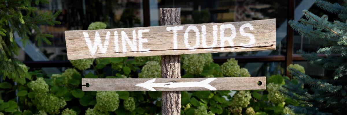 Weinreisen: Mit allen Sinnen genießen