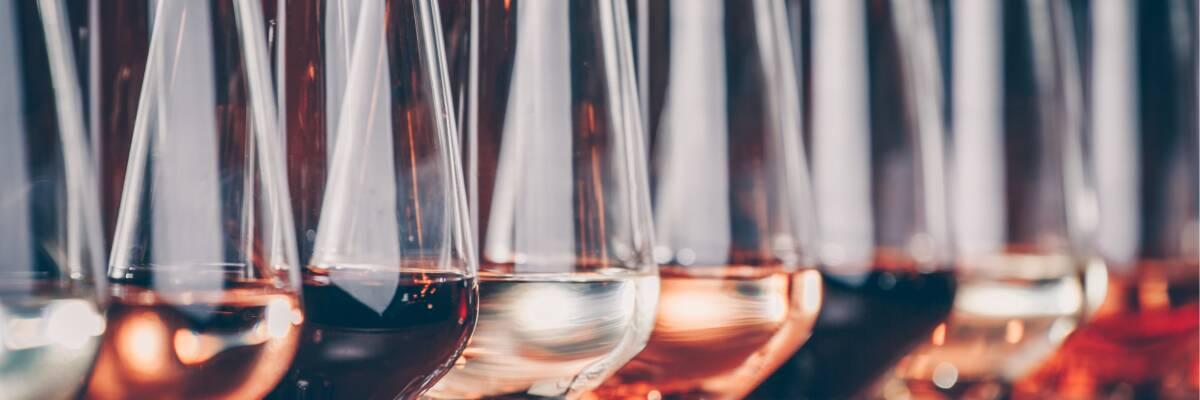 Piwi-Weine: Ein Weg zum nachhaltigen Weinbau