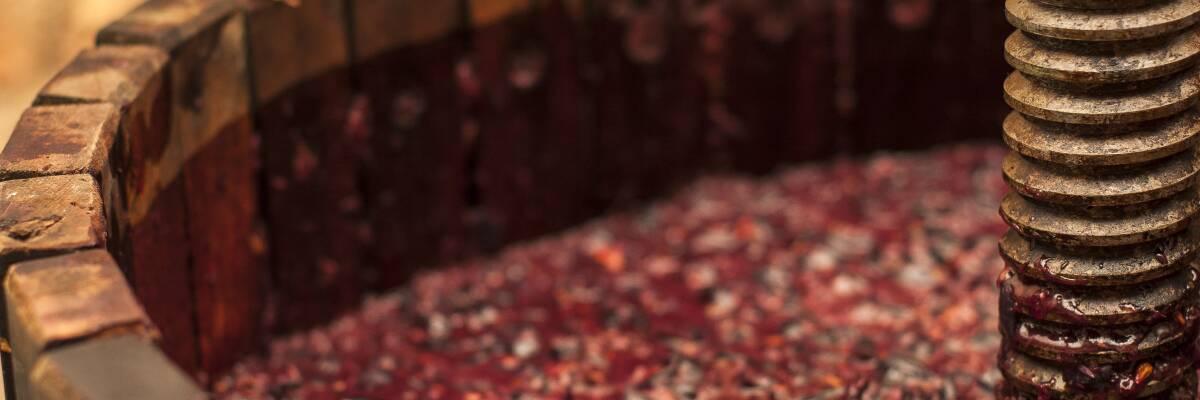 Craft Wine: Handwerkliche Weine