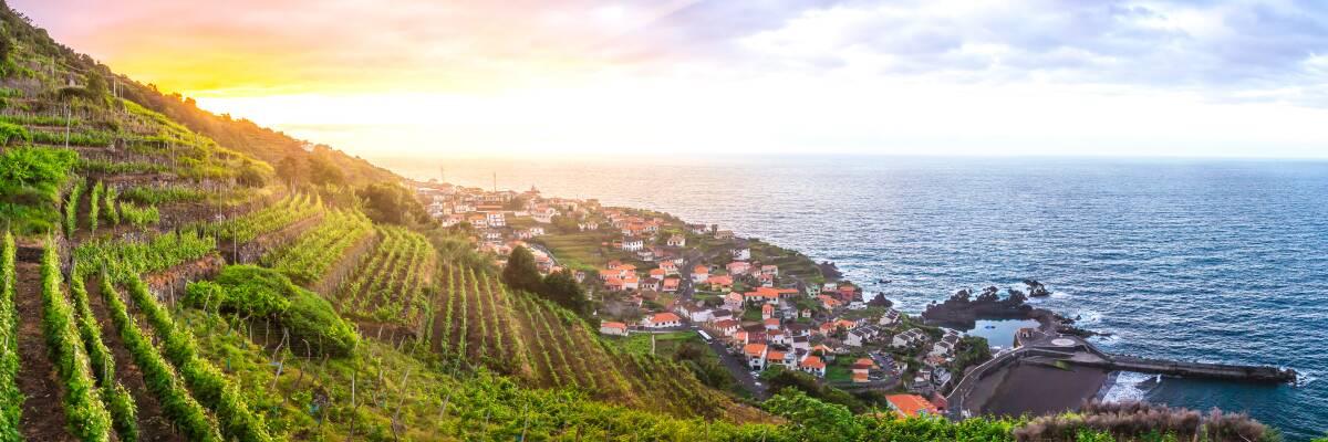 Inselwein: Deutsche Weininseln